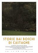 STORIE DAI BOSCHI DI CASTAGNE